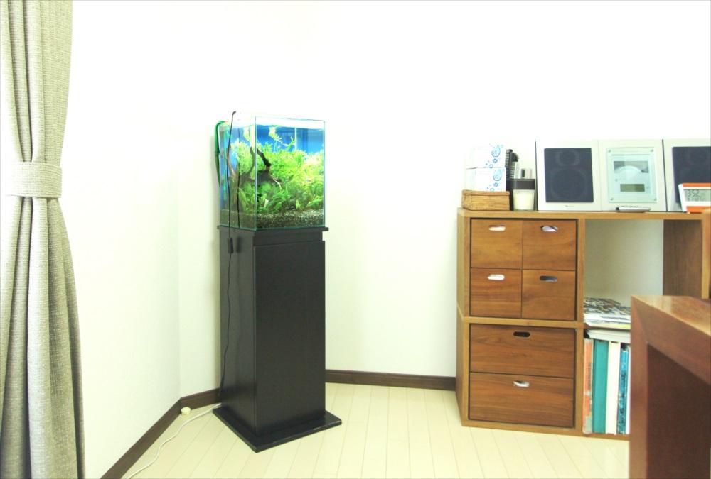 個人宅 30cm淡水魚水槽 水槽全体画像