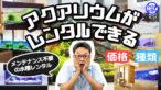 YouTube更新「アクアリウムのレンタルサービス!メンテナンス不要のレンタル水槽!魅力・価格・種類を大公開」