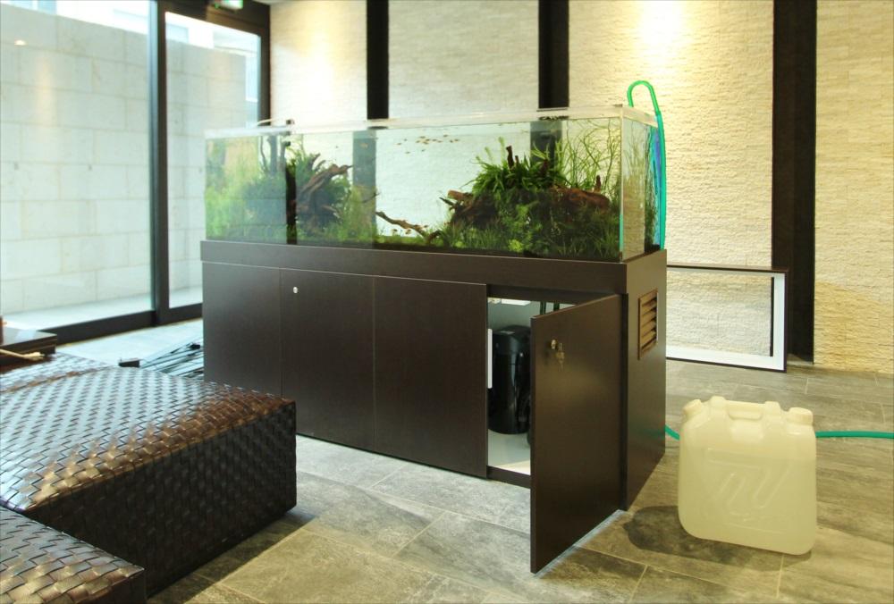 マンションのエントランス 180cm淡水魚水槽 水槽台画像