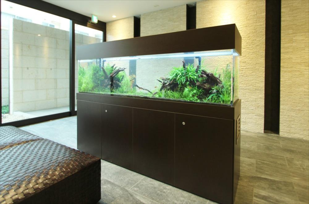 マンションのエントランス 180cm淡水魚水槽 水槽斜め画像