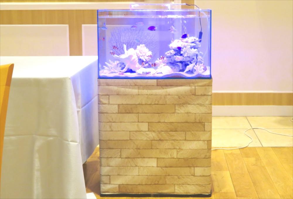 アクアリウムウェディング 60cm海水魚水槽 正面画像
