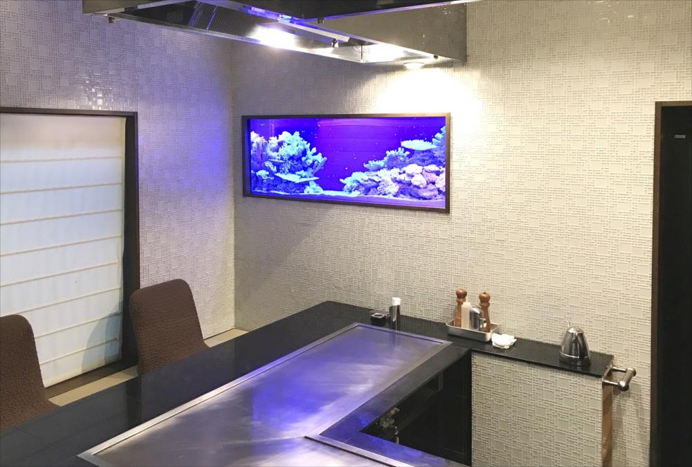 飲食店のシクリッド水槽をスポットメンテナンス メイン画像