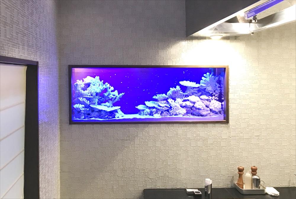 150cm淡水魚水槽 スポットメンテナンス 正面画像