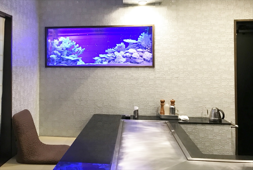 150cm淡水魚水槽 スポットメンテナンス 水槽画像