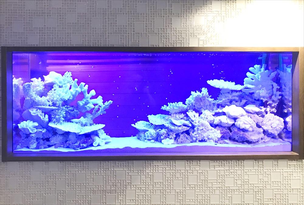 150cm淡水魚水槽 スポットメンテナンス 水槽正面画像