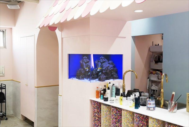 美容室 壁埋め込み型60cm海水魚水槽 販売・メンテナンス事例  その後 水槽画像1