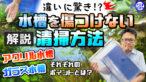 YouTube更新「【違いに驚き!】水槽を傷つけない清掃方法!ガラスとアクリルそれぞれポイントを解説!」