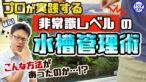 "YouTube更新「【こんな方法あったのか】プロの水槽管理方法10選!""非常識""に見える効果抜群の水槽メンテナンス」"