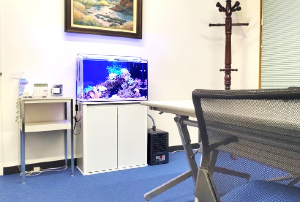 オフィス事務所 60cm海水魚水槽 全体画像
