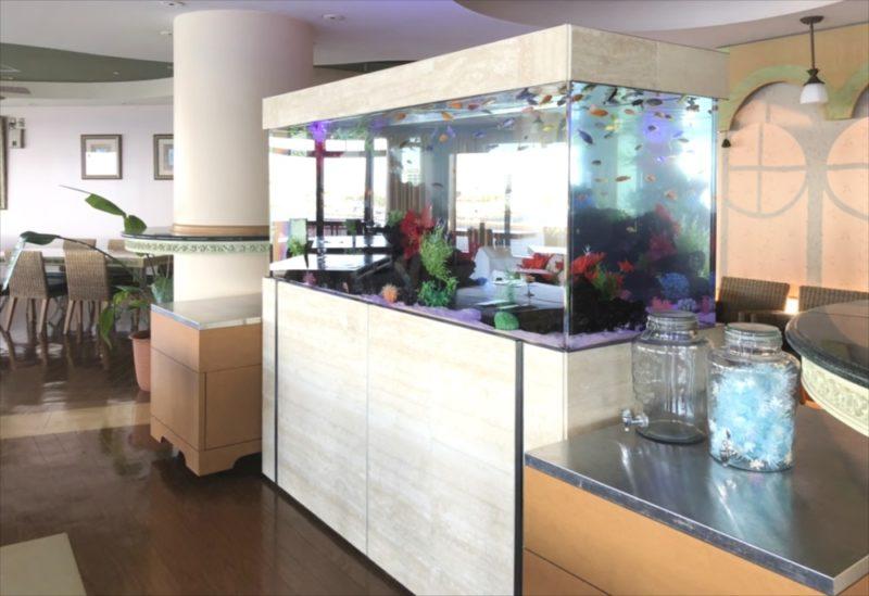 江の島アイランドスパ 様 大型淡水魚水槽リース事例 水槽画像3
