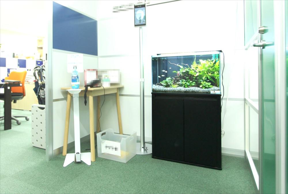会計事務所 60cm淡水魚水槽 斜め全体画像