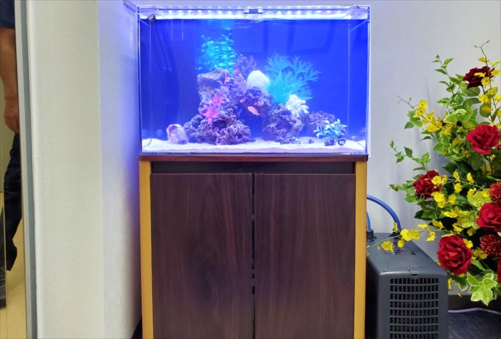 オフィスのエントランス 60cm海水魚水槽 正面画像