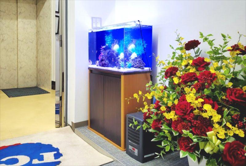 台東区 オフィス 60cm海水魚水槽 設置事例 水槽画像1