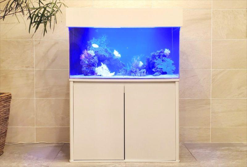 マンションのエントランス 90cm海水魚水槽 設置事例 水槽画像2