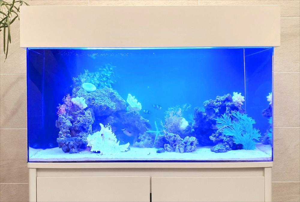 マンション エントランス 90cm海水魚水槽 斜め全体画像