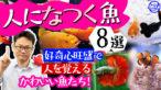 """YouTube更新「【まるでペット⁉】人になつく魚10選!好奇心旺盛で""""人を覚える""""かわいい魚たち!」"""