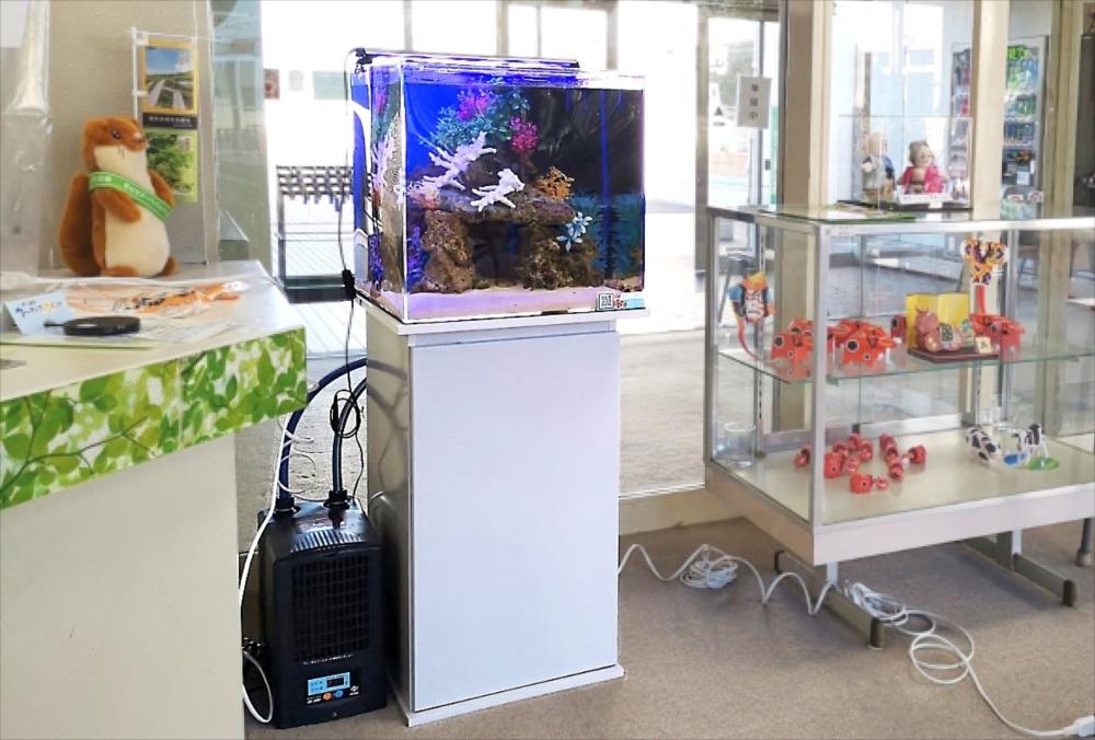 老人福祉センター 横浜市翠風荘 様 海水魚水槽 設置事例