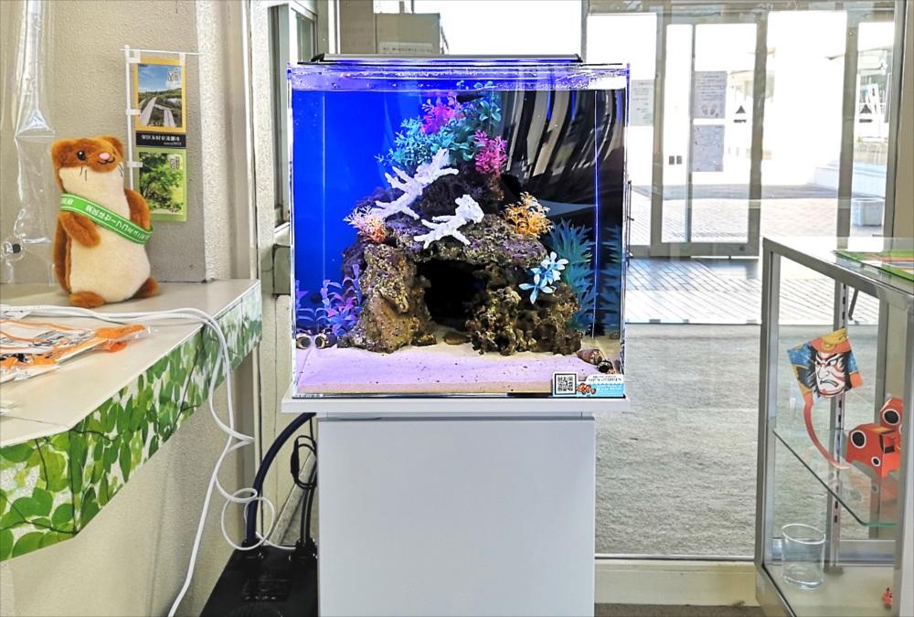 老人福祉センター エントランス 海水魚水槽 正面画像