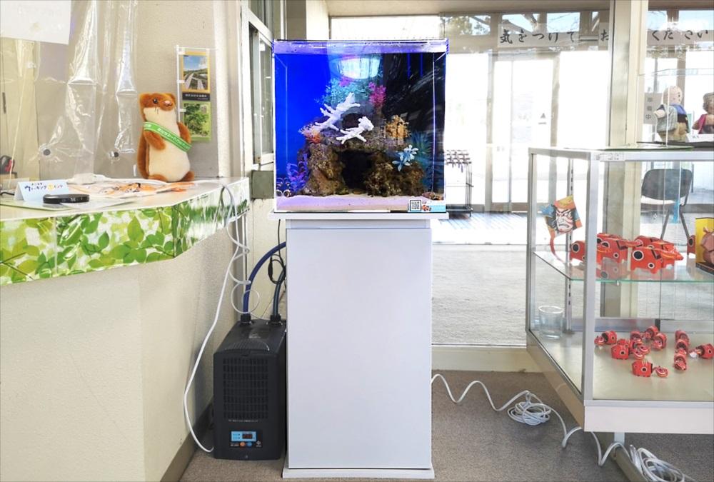 老人福祉センター エントランス 海水魚水槽 正面全体画像