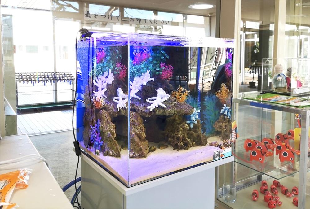 老人福祉センター エントランス 海水魚水槽 生体画像