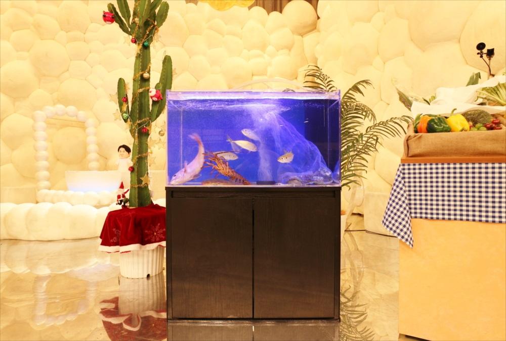 テレビ朝日『マツコ&有吉 かりそめ天国SP』活魚水槽を設置 メイン画像