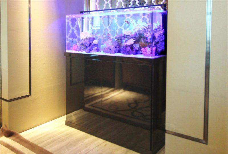 シャングリ・ラ ホテル 東京 様 水槽短期レンタル 水槽画像4