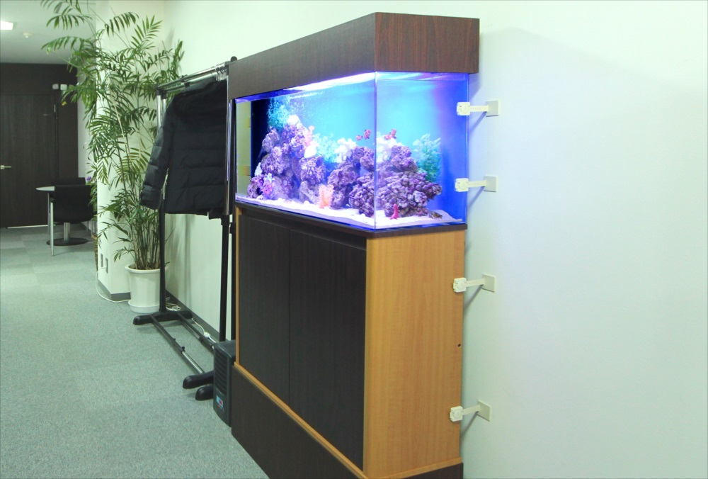 中央区 オフィス事務所 90cm海水魚水槽 設置事例 メイン画像