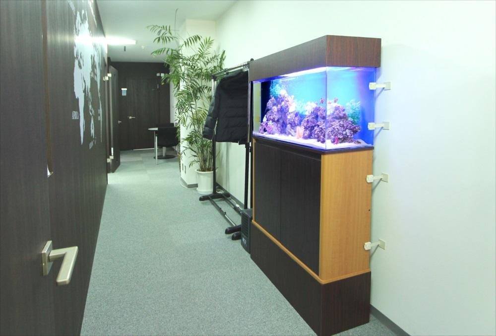 オフィス事務所 90cm海水魚水槽 全体画像