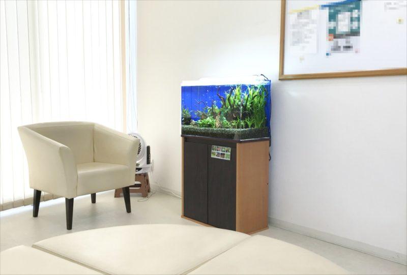 メディカルクリニックの待合室 60cm淡水魚水槽 設置事例 水槽画像3