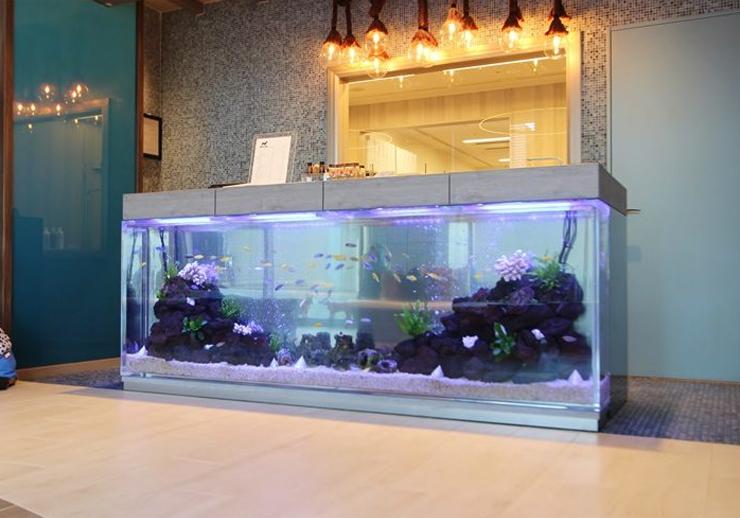 ホテル・店舗の水槽レンタル