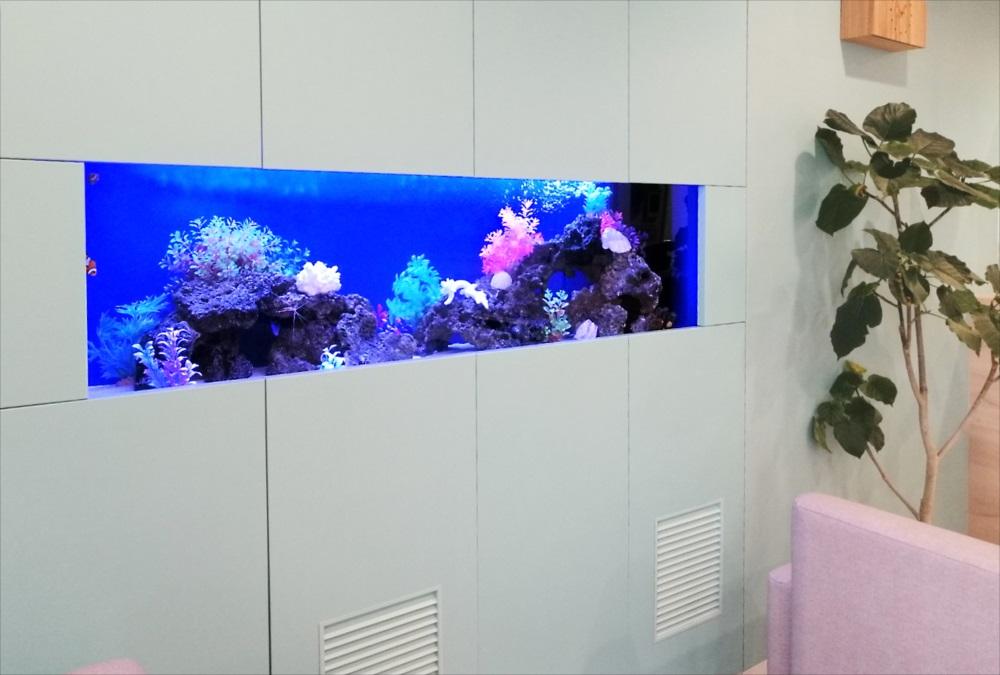 クリニックの待合室 大型海水魚水槽 斜め全体画像