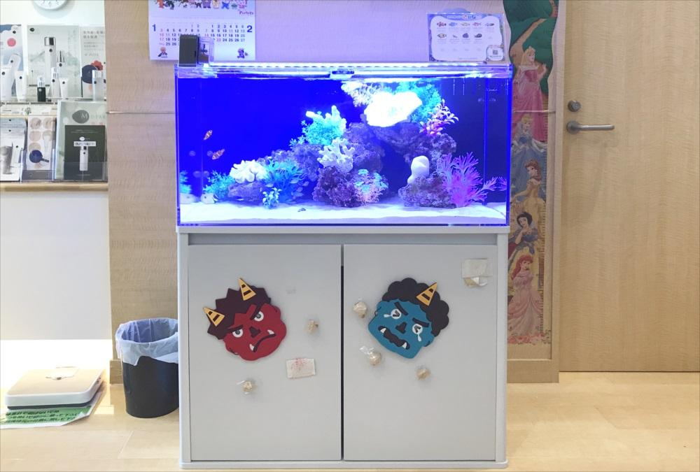 クリニック 待合室 90cm海水魚水槽 正面画像