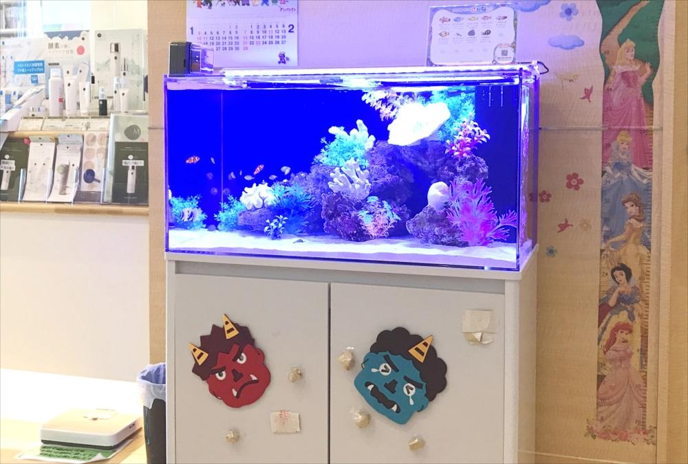 クリニック 待合室 90cm海水魚水槽 斜め画像