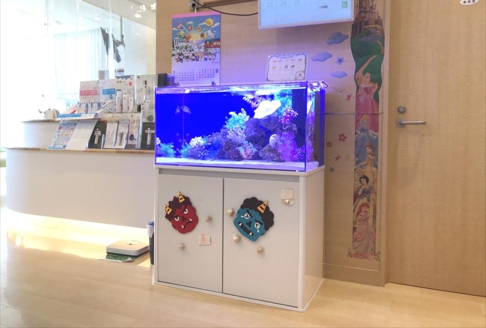 クリニック 待合室 90cm海水魚水槽 斜め全体画像