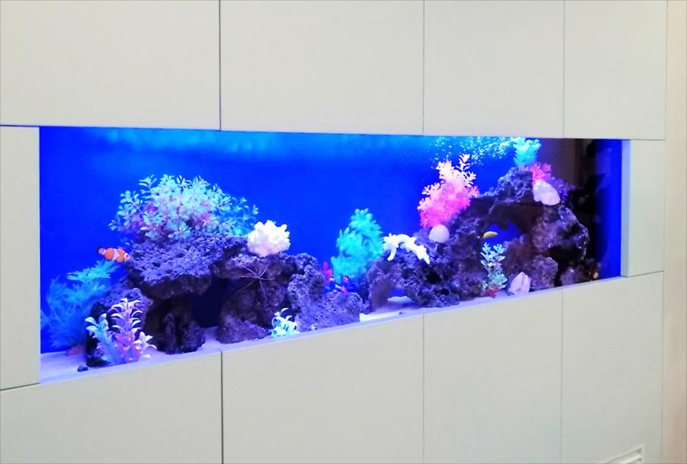 クリニックの待合室 大型海水魚水槽 レイアウト画像