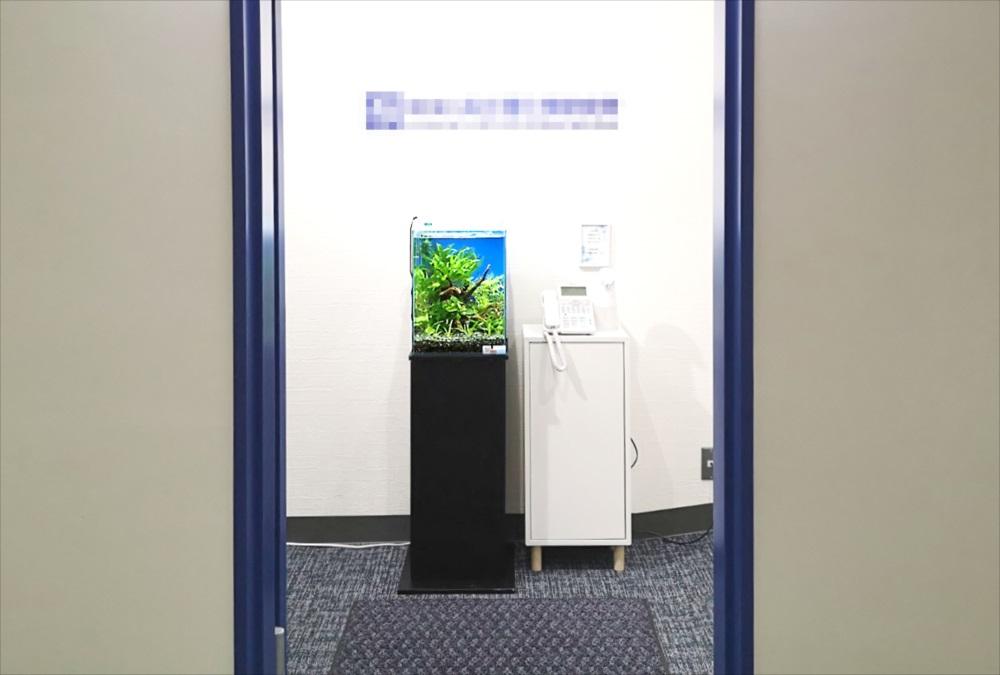 オフィスの受付ロビー 30cm淡水魚水槽 全体画像