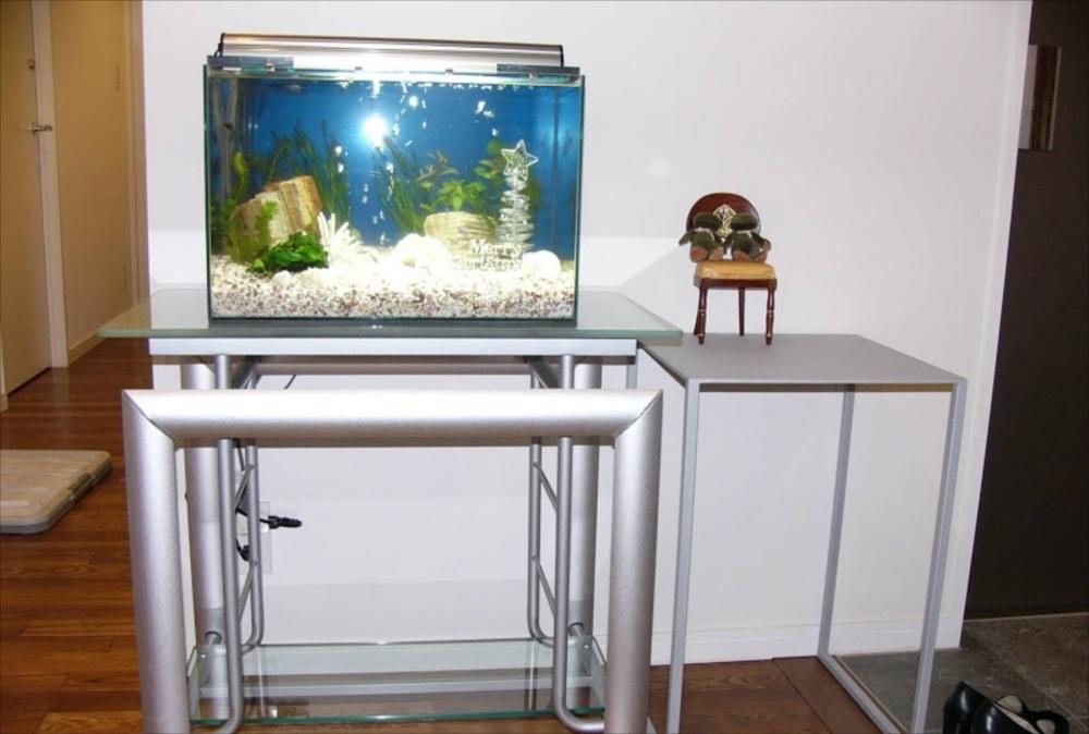 個人宅 60cm淡水魚水槽 全体画像
