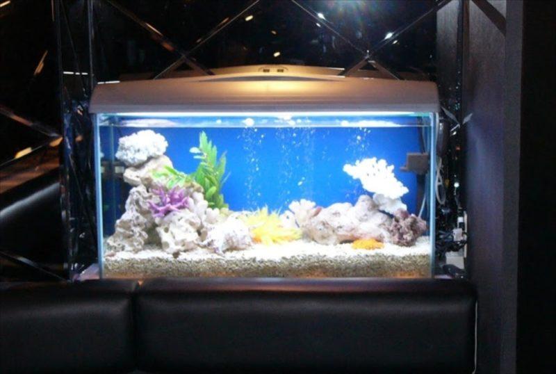 探偵バー 新宿歌舞伎町 様 90cm海水魚水槽 設置事例 水槽画像1