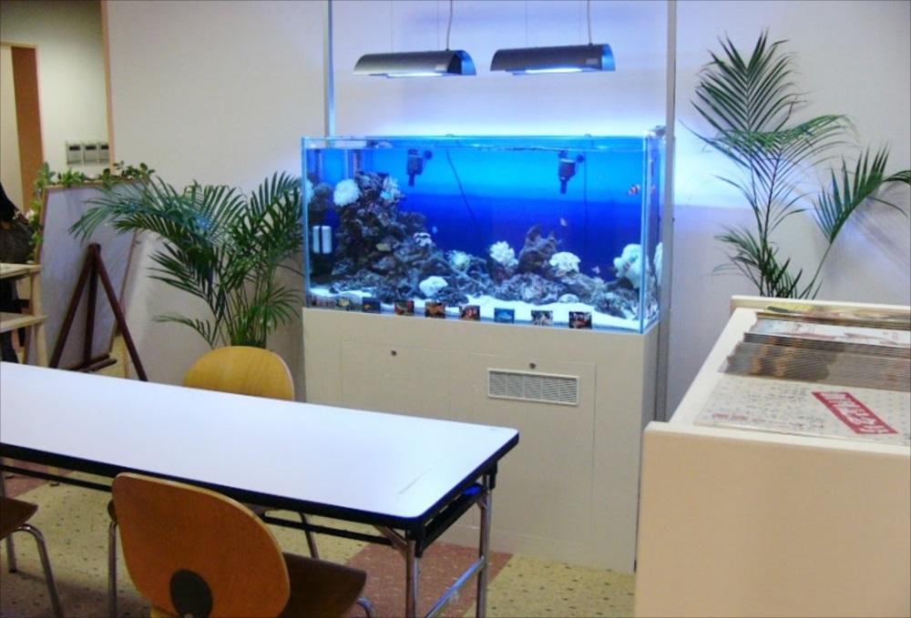 スポーツクラブ 120cm海水魚水槽 斜め画像