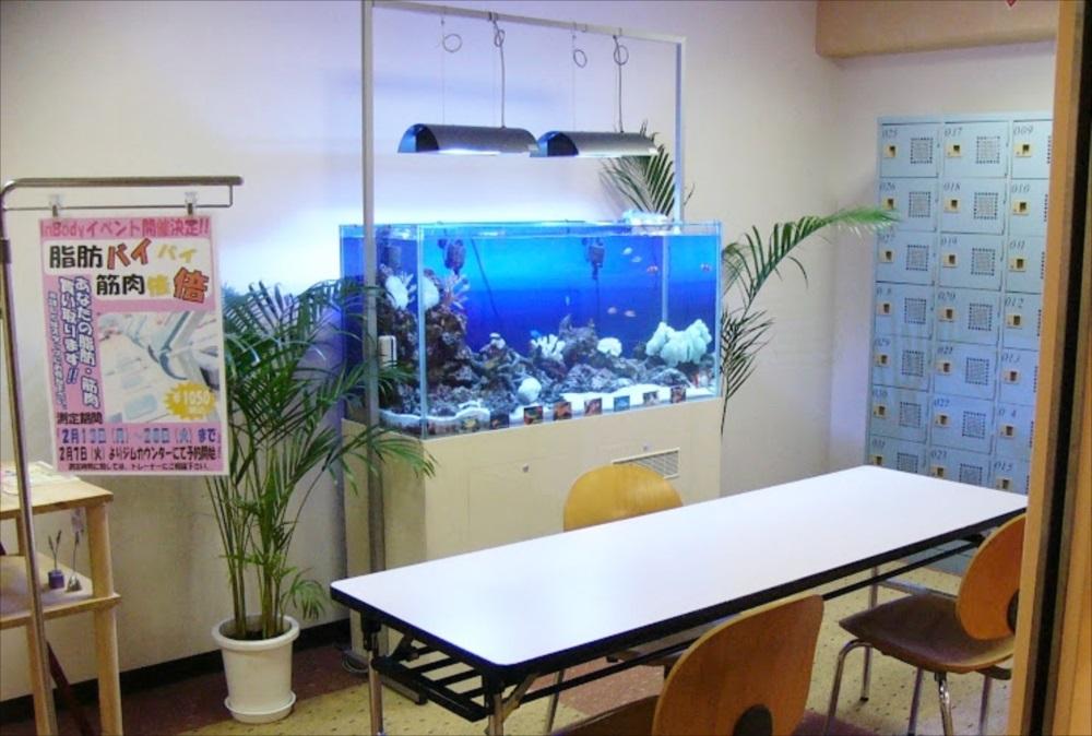 スポーツクラブ 120cm海水魚水槽 斜め全体画像