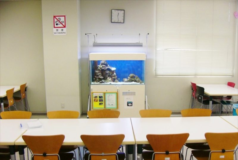 大正大学様 2F学生ラウンジ 海水魚水槽 設置事例 水槽画像1