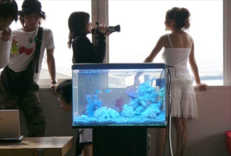女優 吉野紗弥香さん DVD撮影 水槽短期レンタル 水槽画像3
