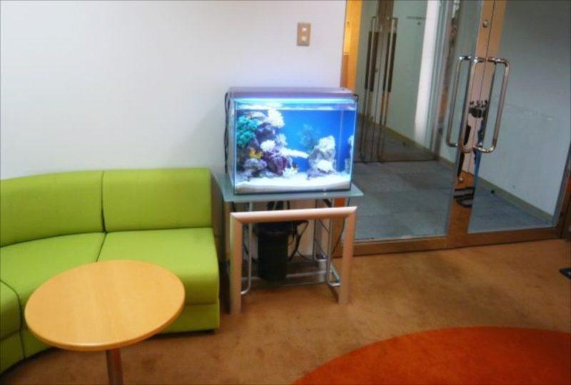 三生管財株式会社 様 60cm海水魚水槽 設置事例 水槽画像2
