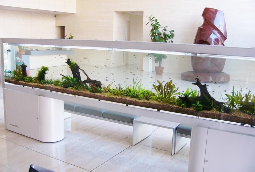 施設のエントランス 4m大型淡水魚水槽 メンテナンス事例 メイン画像