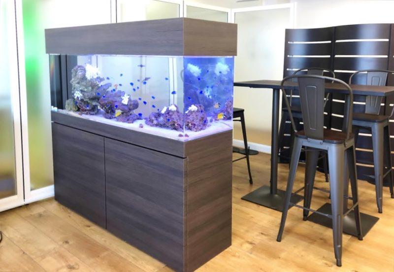 オフィス事務所 大型150cm海水魚水槽 設置事例 水槽画像2