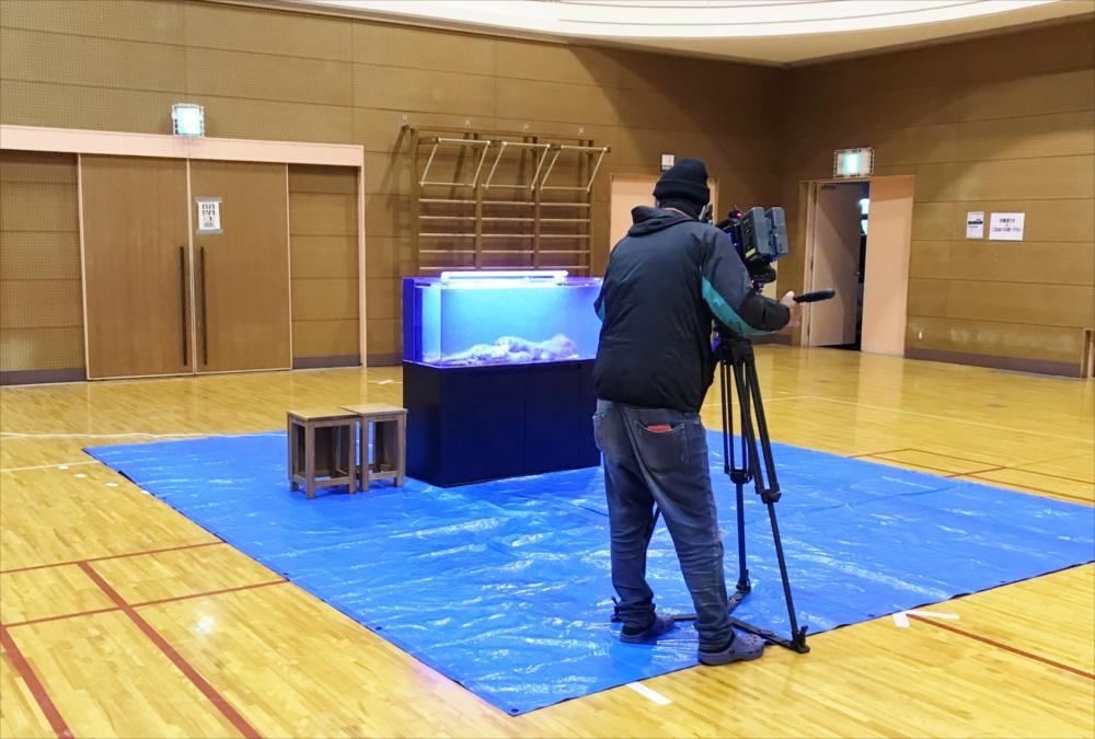 テレビ番組 120cm海水魚水槽 撮影画像