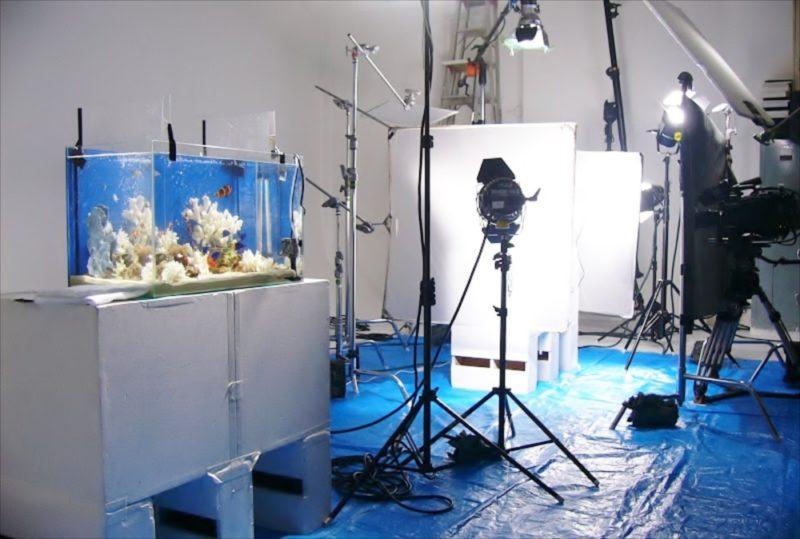 CM撮影の素材撮影協力 90cm海水魚水槽・淡水魚水槽等を設置 水槽画像1