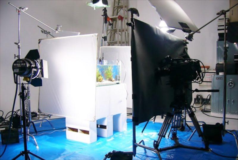 CM撮影の素材撮影協力 90cm海水魚水槽・淡水魚水槽等を設置 水槽画像2