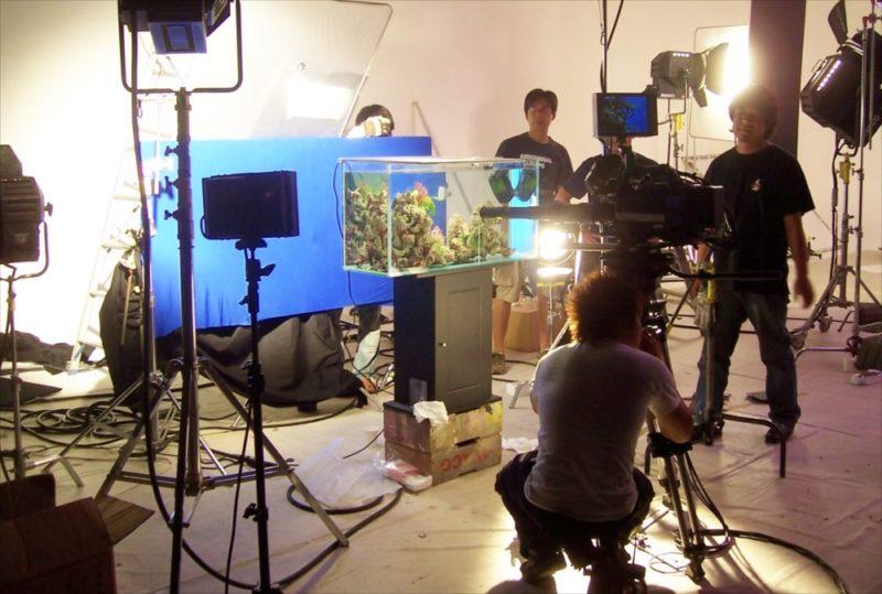 素材撮影現場に90cm海水魚水槽を設置 水槽画像3