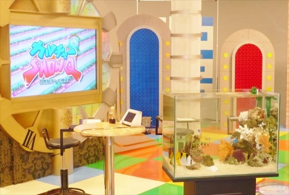 スタジオ撮影協力 60cm海水魚水槽を設置 メイン画像